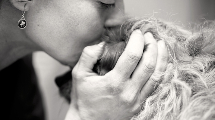 la tenencia responsable de mascotas